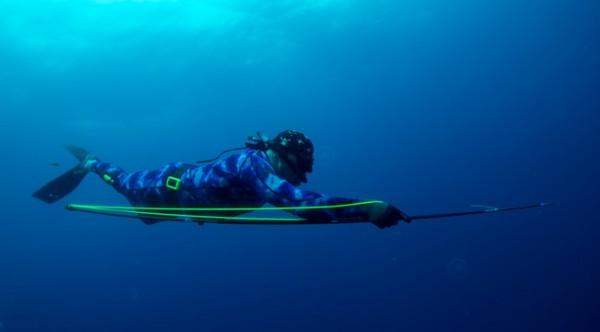 Chasse sous-marine au pole spear