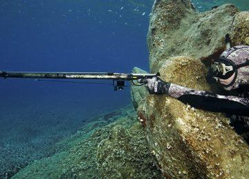 Technique : l'agachon ou affût sous-marin