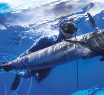 Les nouveautés Sporasub Spearfishing 2017