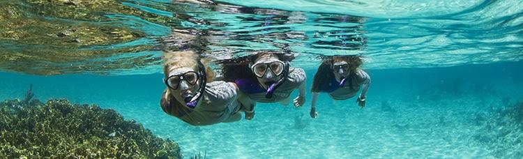 Le snorkeling, une balade palmée entre amis ou en famille à la découverte des fonds marins