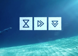 #2 Vu au salon de la plongée : Submind Freediving