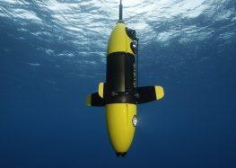 VIDEO : Une plongée en apnée capturée par le drone Diveye !