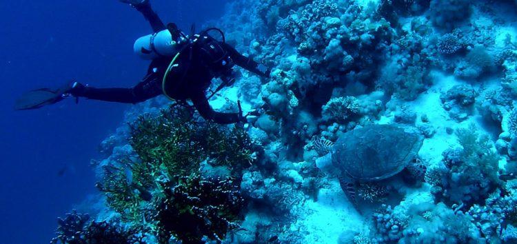 Séjour plongée en Indonésie : Zoom sur ses meilleurs spots !