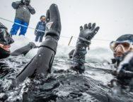 [COMMUNIQUÉ] Envie de découvrir la plongée en apnée sous la glace ?