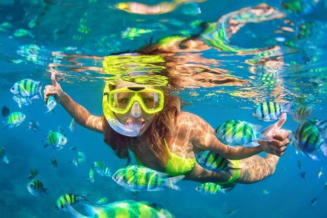Où faire du snorkeling en Bretagne? Quels équipements pour de la randonnée palmée?