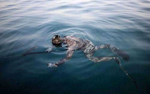 faire le canard pour la chasses sous marine