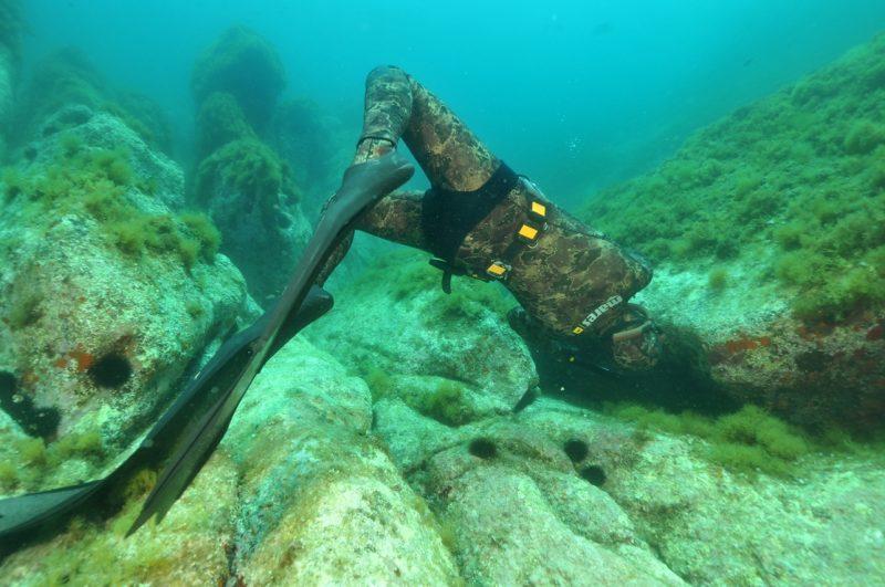 technique chasse sous marine chasse a trou